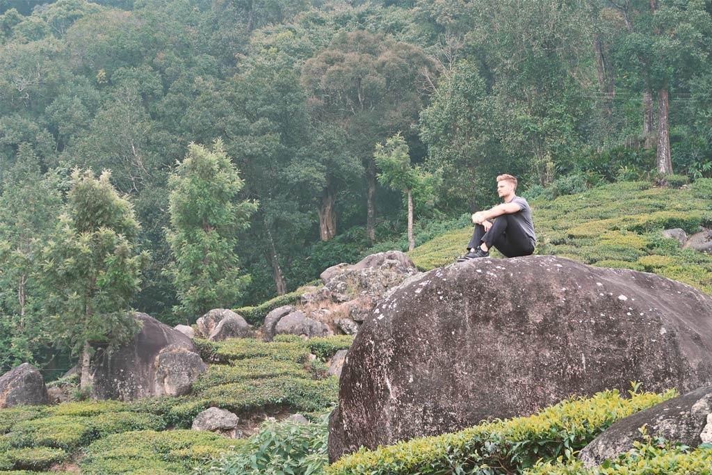 Munnar in Indien - wandern in den Teeplantagen - likeontravel