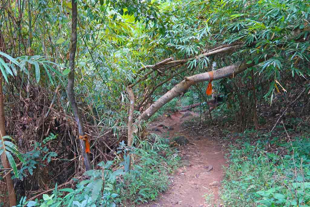 Monks Trail in Chaing Mai