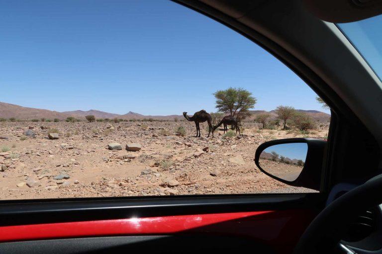 Marokko-Roadtrip-Route
