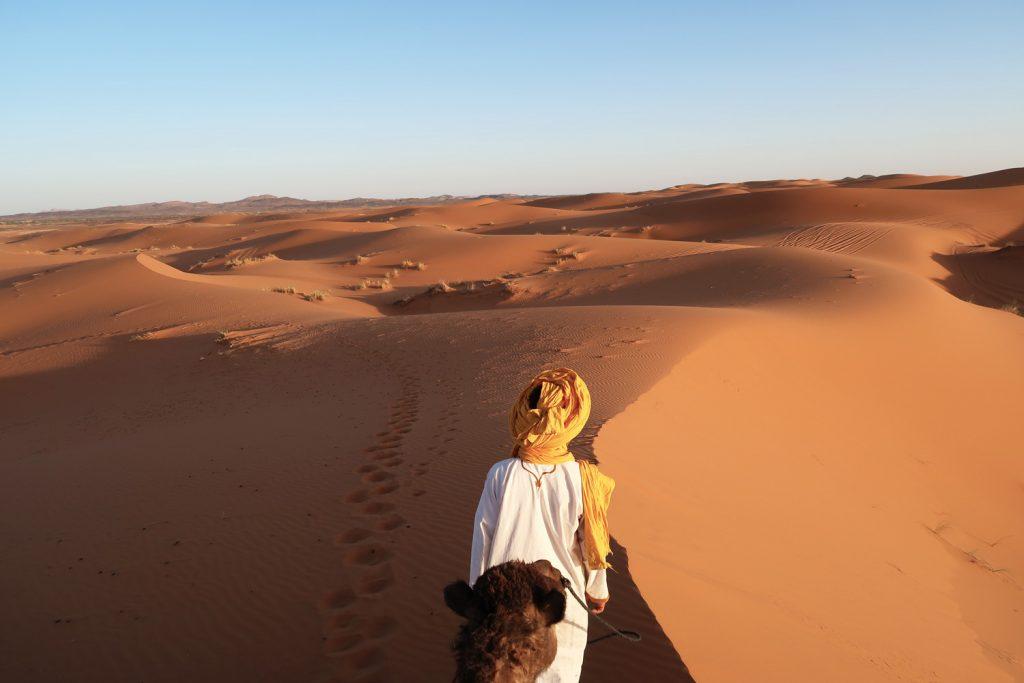 Sahara Wüste - Kamel Trek