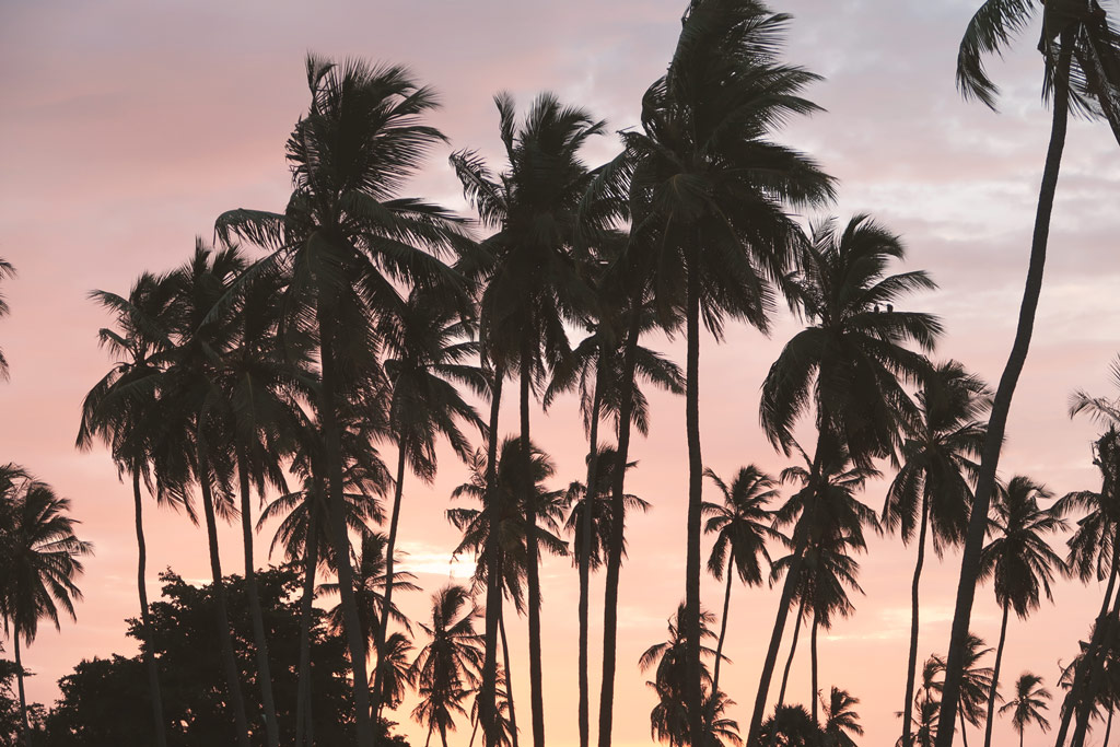 Sonnenuntergang in Arugambay