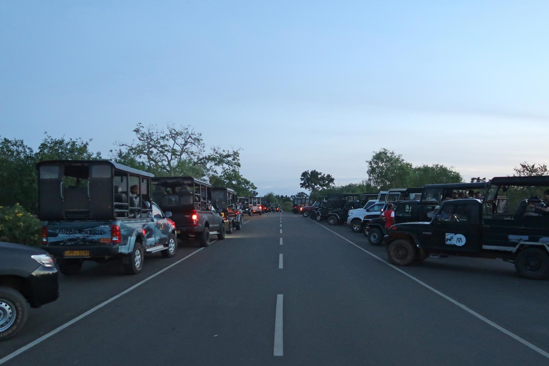 Yala Nationalpark Eingang - Wartende Jepps