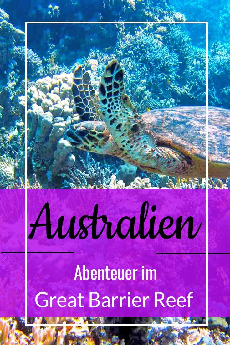 Entdecke die wunderschöne Unterwasserwelt des Great Barrier Reef!