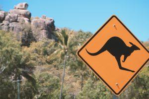 Cairns, eine Stadt an der Ostküste Australiens. Der beste Start für deine Reise.