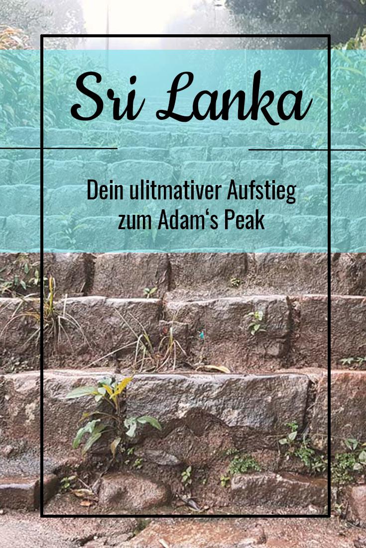 Alle wichtigen Tipps für deinen perfekten Aufstieg zum Adam's Peak! #srilanka #adamspeak #wanderung #route #vorbereitung #infos #wissenswert #tipps #reiseblog #blog