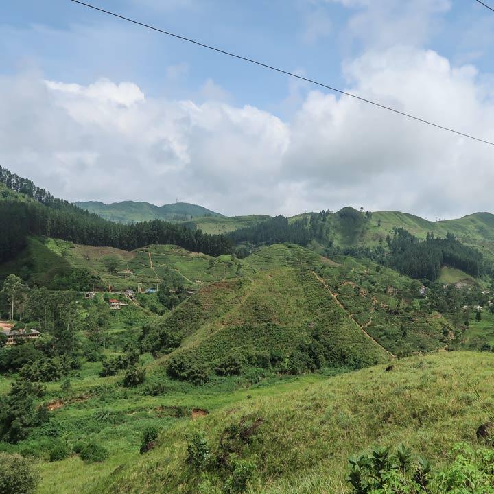 Landschaft bei der Sri Lanka Zugfahrt