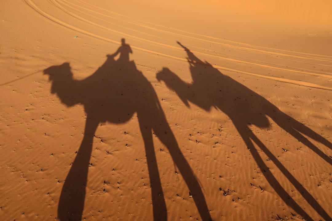 Kamel Tour in Marokko