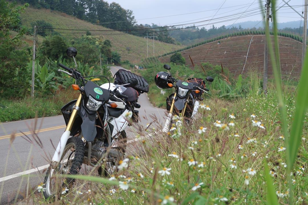 Honda Motorräder in Thailand Chiang Mai