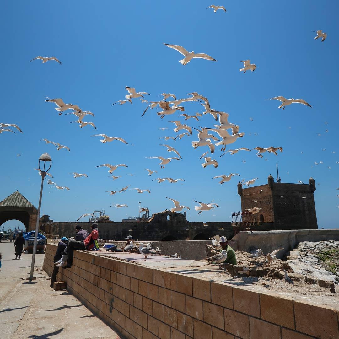 Marokko individuell erleben - Essaouira Rundreise Orte
