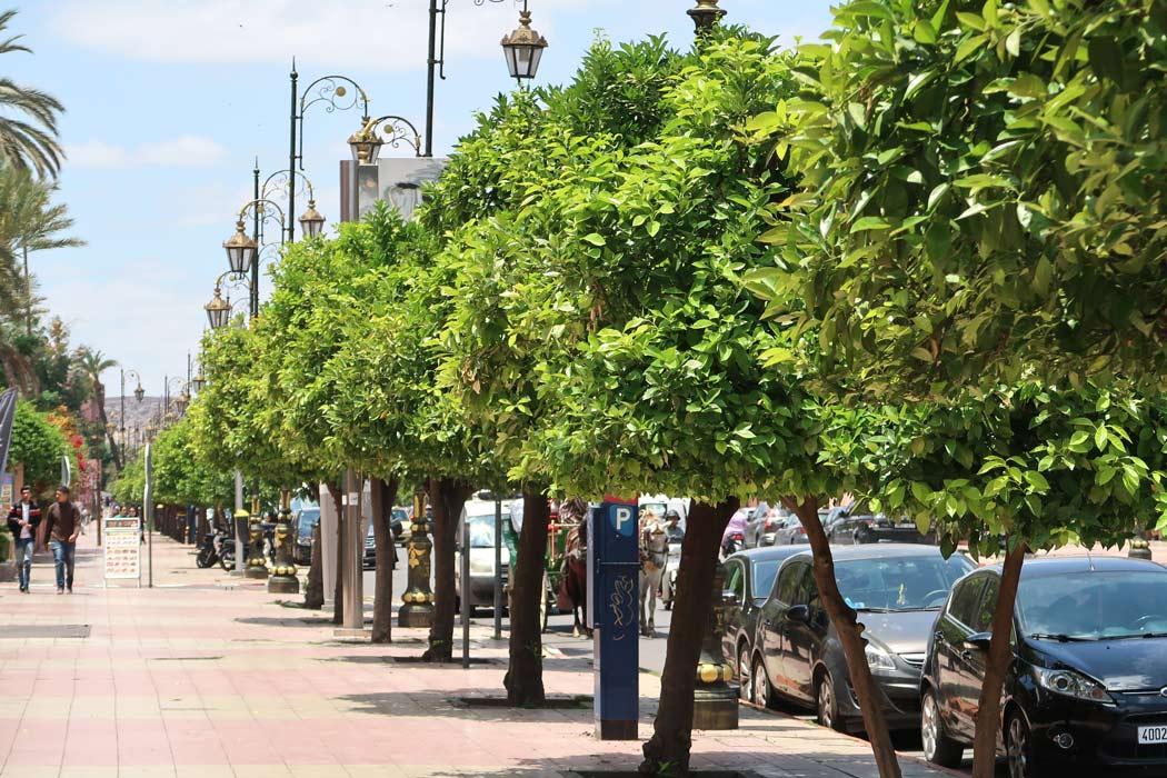 Die Straßen von Gueliz in Marrakesch