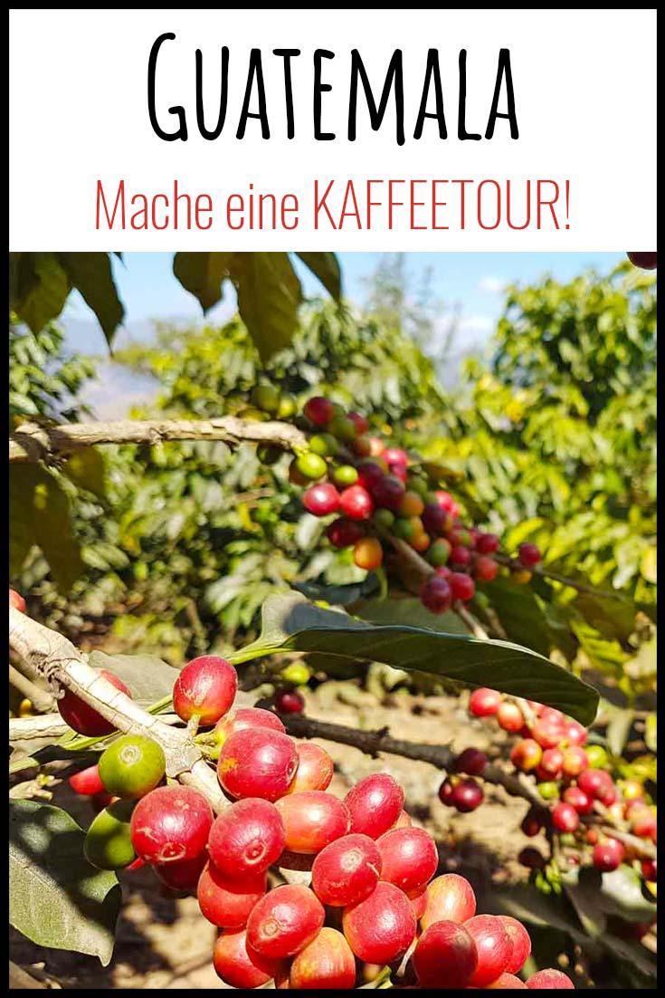 ANTIGUA - röste deinen eigenen Kaffee!! // Kaffeetour Guatemala // Kaffee Mittelamerika // Tour in Guatemala // Antigua Sehenswert // Reiseblog