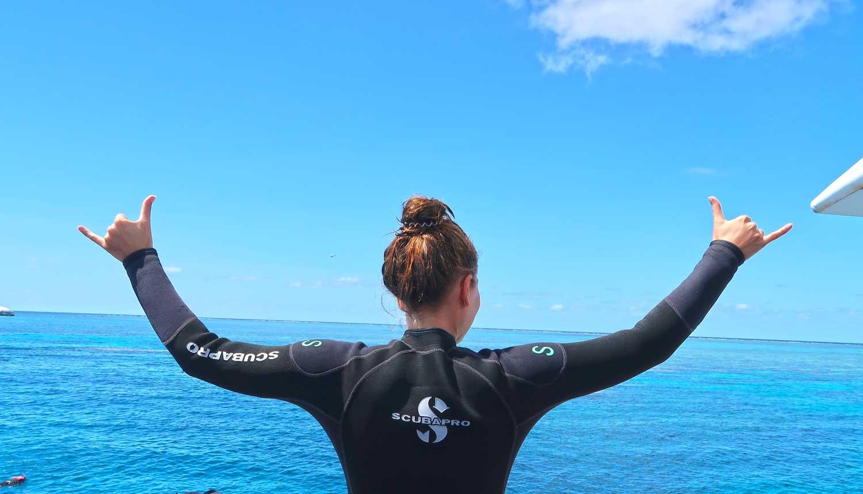 Ausgestattet mit einem Neoprenanzug erkundigt es sich hervorragend das Great Barrier Reef!