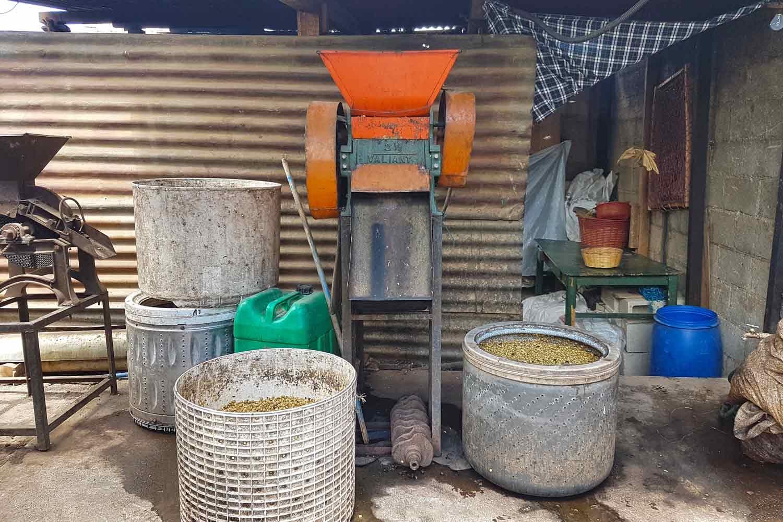 Antigua Kaffee Tour | Röste deinen guatemaltekischen Kaffee - Maschine
