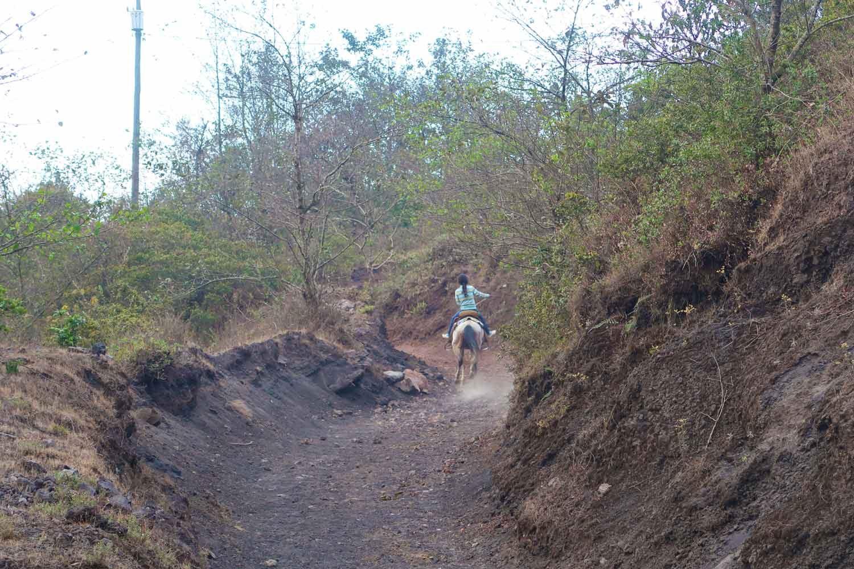 Pacaya Vulkan Tour - Pferd