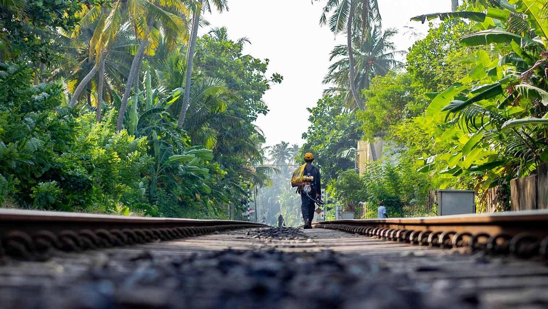 Packliste Sri Lanka - Die wichtigsten Dinge für deinen Rucksack