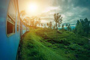 Sri Lanka Train with Sunset