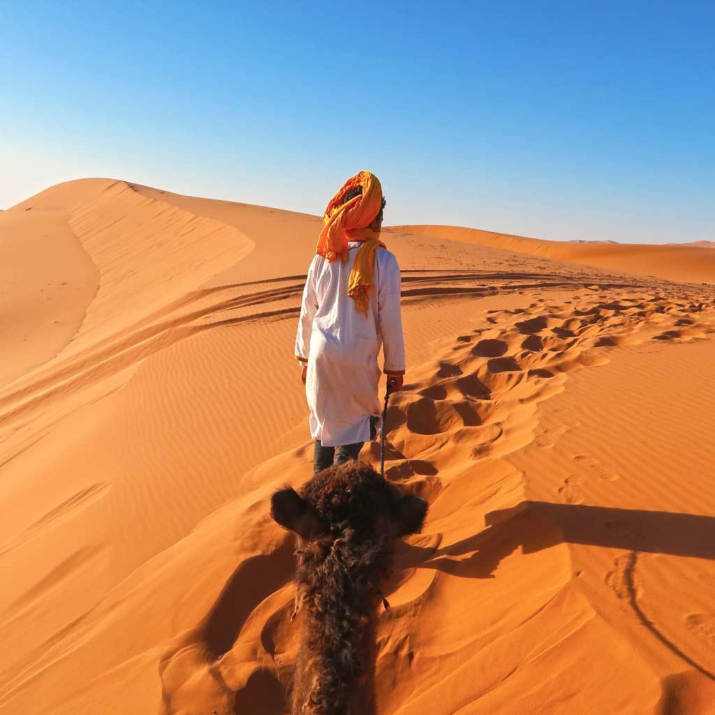 Bucket List - Wüste Sahara Kamelritt
