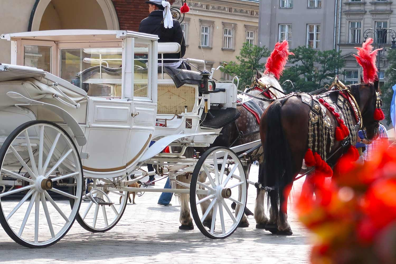 Krakau Kutsche vor der Marienkirche