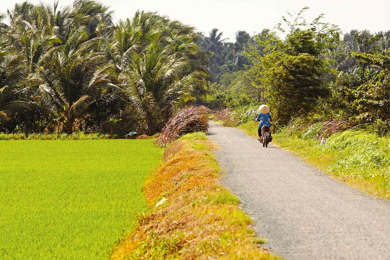 Vietnam Reisetipps Route - Landschaft in Vietnam