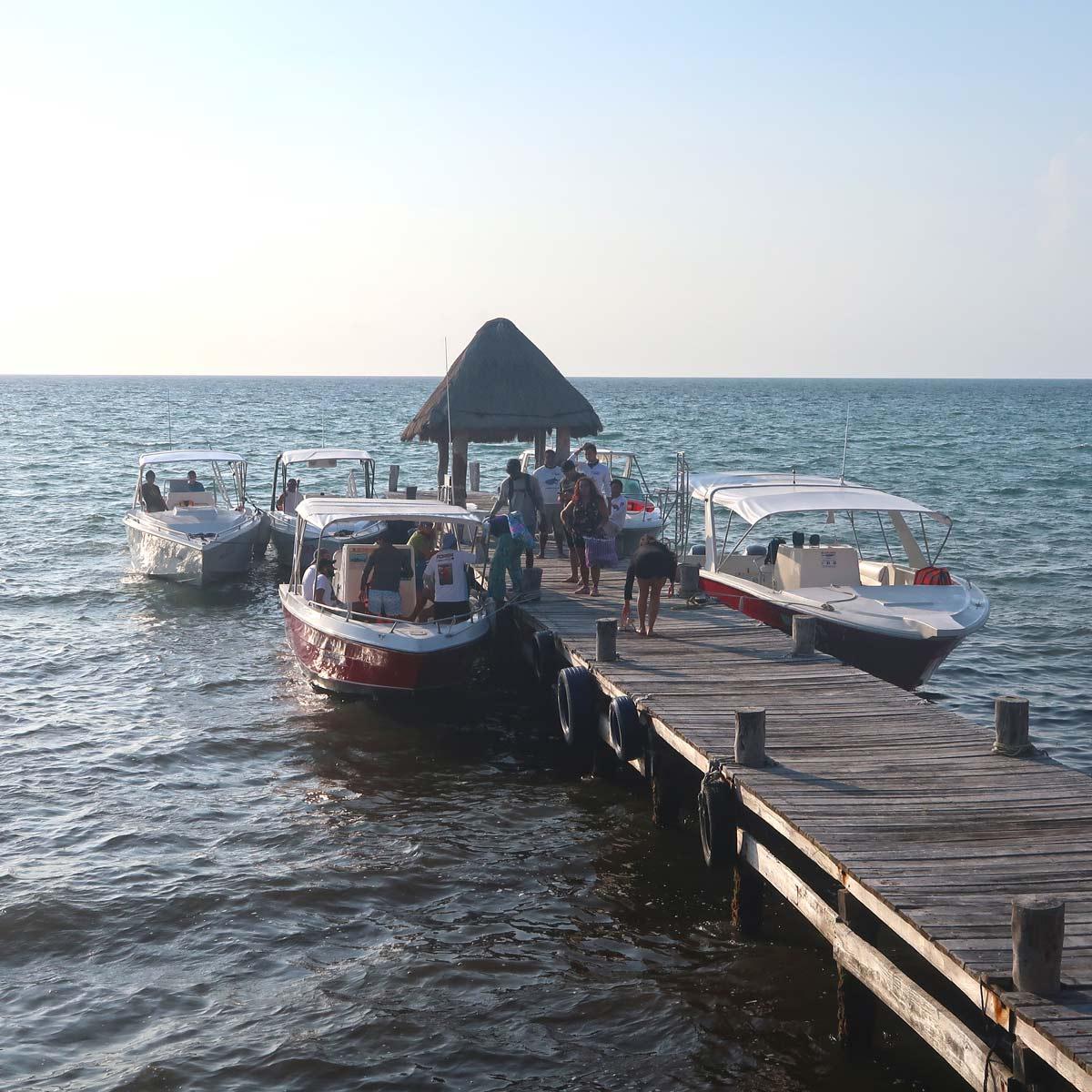 Boote für die Walhai Tour