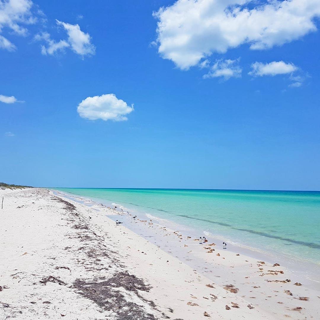 In Mexiko kannst du im Karibischen Meer und im Golf von Mexiko planschen