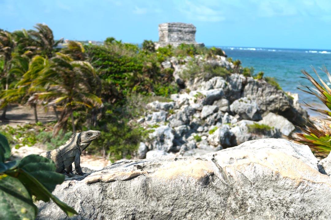 Maya-Stätte direkt am Strand in Tulum