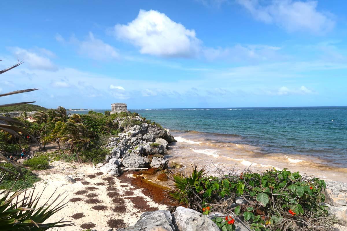 Eine Seegrasplage beschäftigt die Mexikaner und stört an manchen Tulum Sehenswürdigkeiten