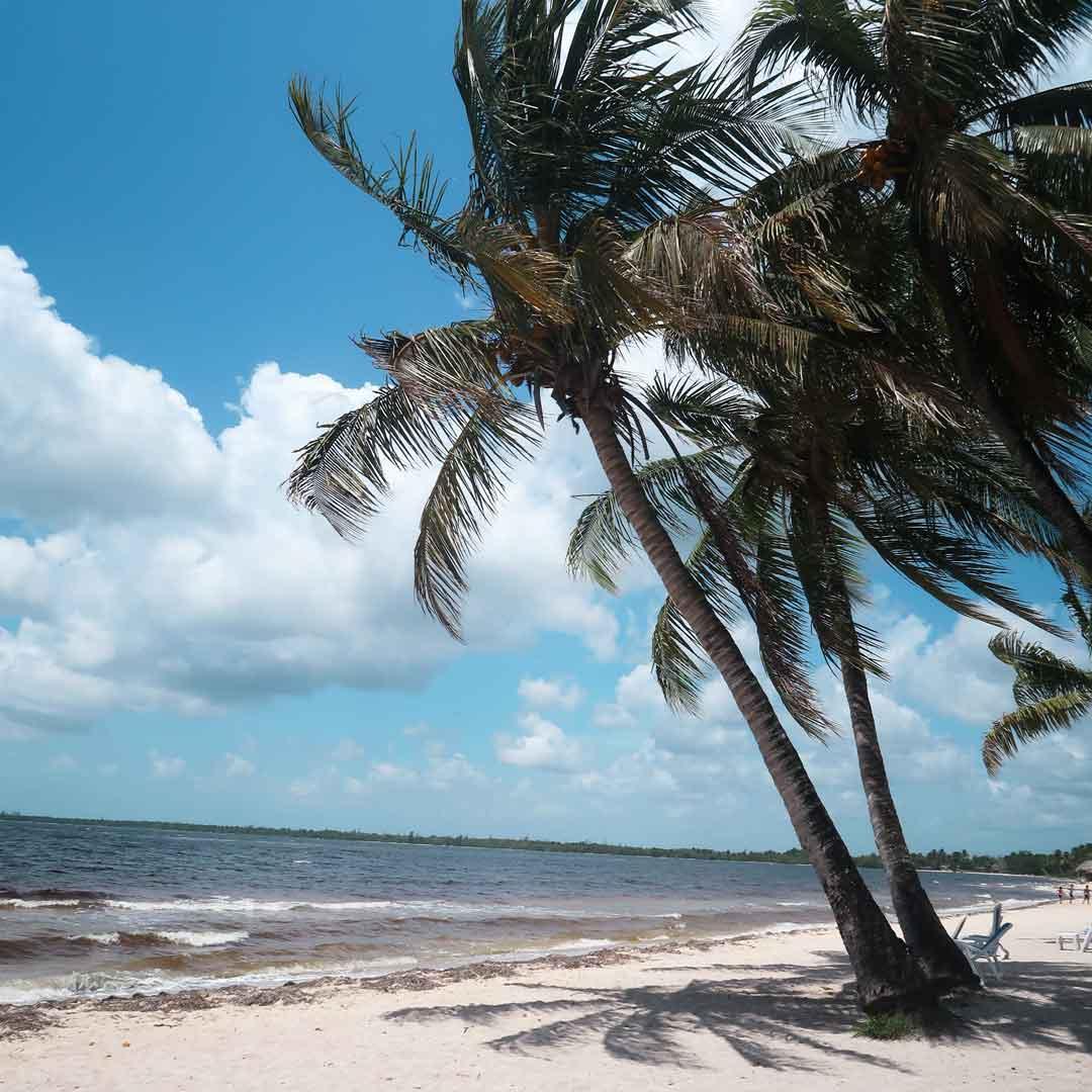 Playa Larga liegt an der berühmten Schweinebucht in Kuba