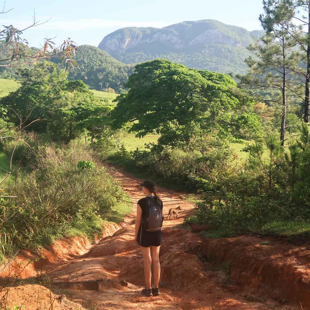 Breite Wanderwege in der puren Natur von Kuba