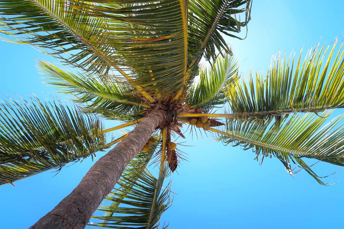 Die perfekte Reisezeit für Trinidad Kuba