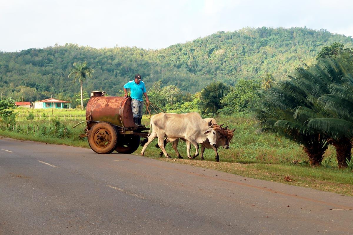 Ursprüngliche Landwirtschaft in Vinales Kuba