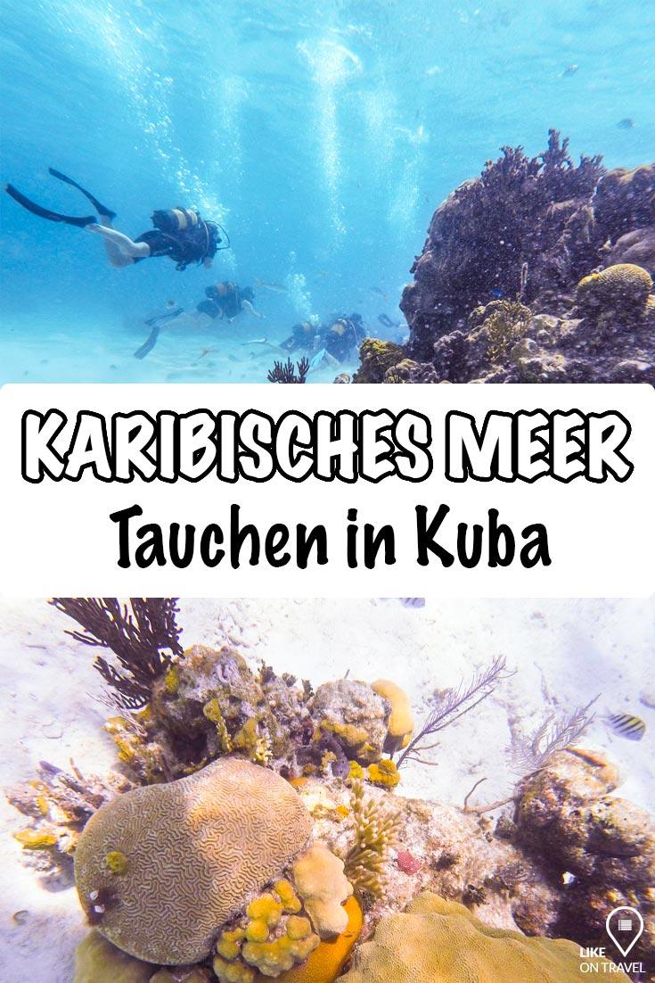 Playa Larga - Tauchen in der kubanischen Schweinebucht. #reisetipps #kuba #tauchen #tauchtour #karibischesmeer #karibik #reiseblog #blog #likeontravel
