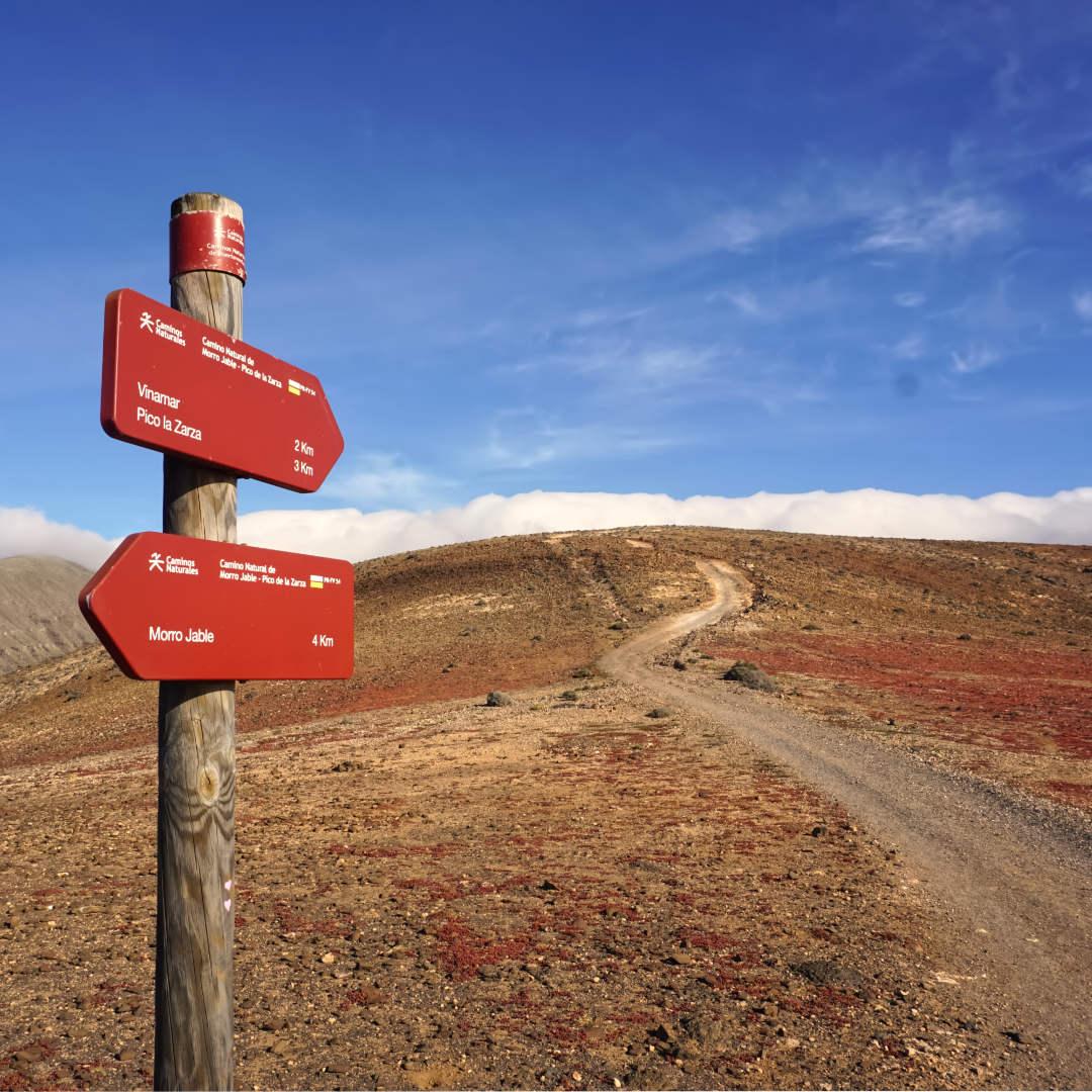 Wanderpfad zum Pico de la Zarza