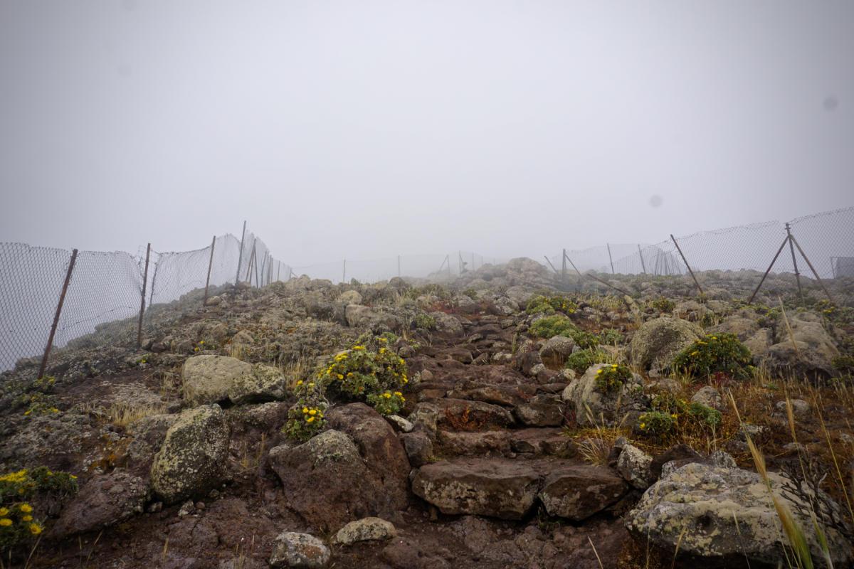 Gipfelgebiet Pico de La Zarza